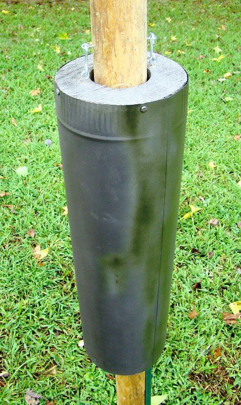 Bird feeder baffles and bird house pole predator guards - deter squirrels, raccoons, snakes from climbing, raiding feeding / nesting sites