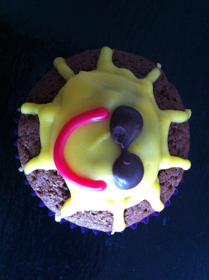 Solskins muffins