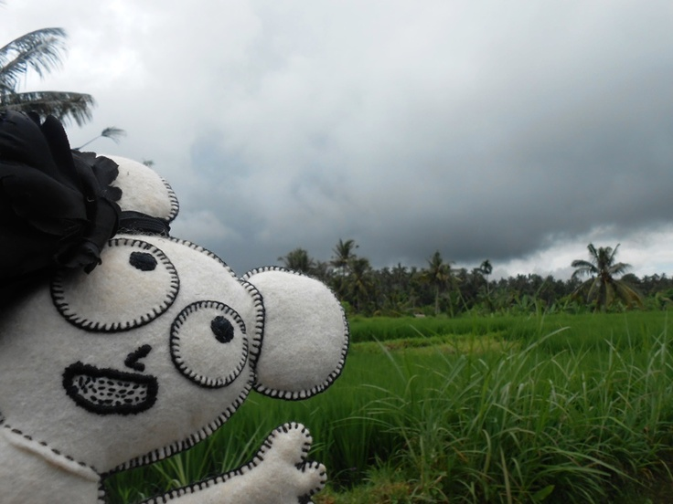 rain is following us - Bali