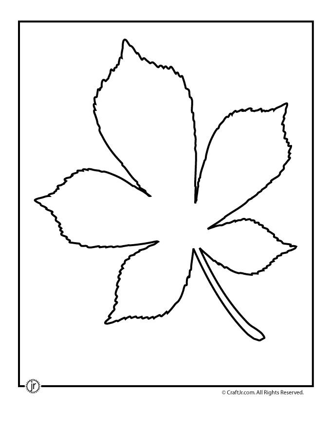 Leaf Template Printables Chestnut Tree Leaf Pattern – Craft Jr.