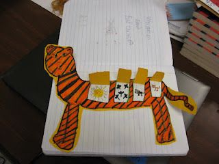 Food chain foldable: draw a large diagram of the animal at the top of the food chain. Then, using flaps, draw things inside that animal's belly that represent the rest of the food chain.
