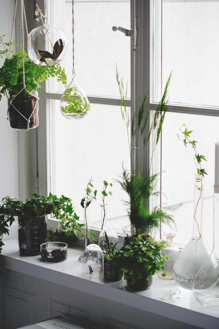 Plants all over - urban jungle on the window sill and some gorgeous hanging planters.