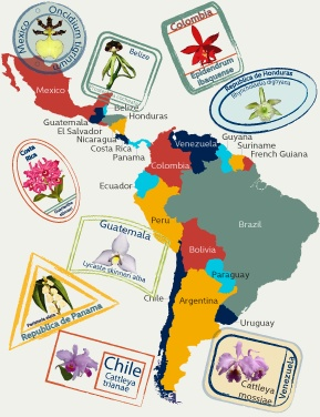 Latin America map for those who believe that South America is all Latin America...well it's not and now I know that ;)