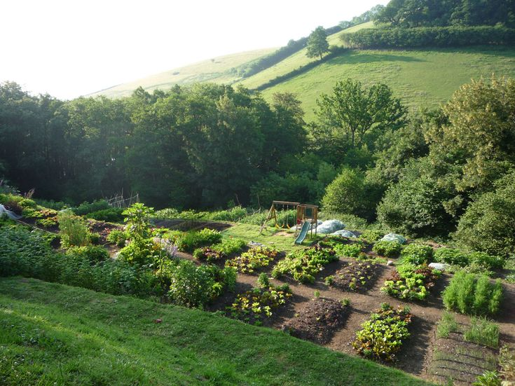 8 Simple But Sure Steps To Miracle Farms:How You Make a Living From a 4 Acre Permaculture Orchard (photo & video)
