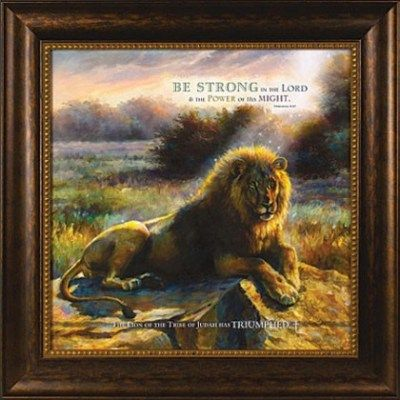 lion of judah framed art