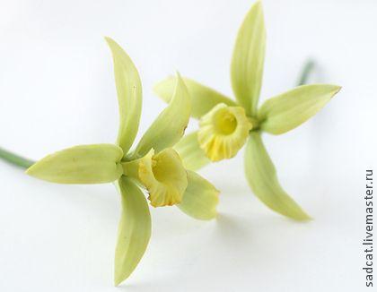 Цветы ванили - салатовый,шпильки для невесты,прическа невесты,цветы в прическу