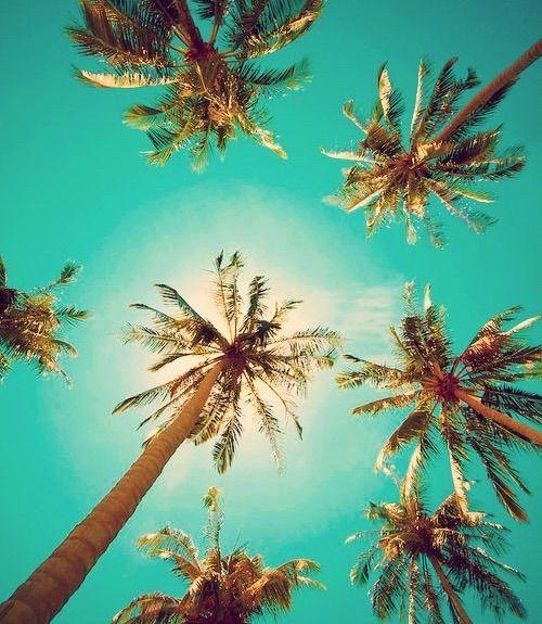 120 best ?Summer Wallpaper? images on Pinterest | Landscapes ...