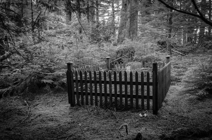 Forest Grave Site in Haida Gwaii, British Columbia....if you Ever get the chance to visit the Queen Charlotte Island, or as it's now known Haida Gwaii...do it!! You will never really find anything more beautiful than these island!!
