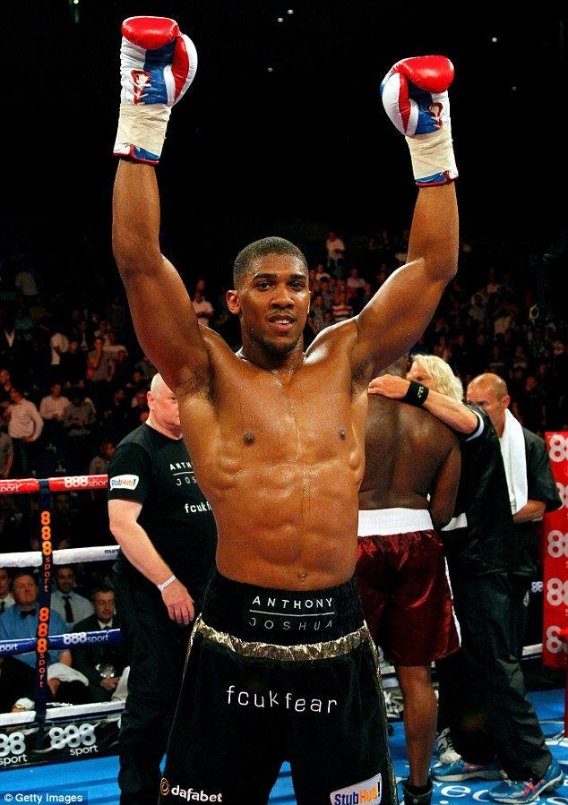 Straightforward: Anthony Joshua beat Matt Skelton by knockout at the Liverpool Echo Arena to claim his seventh professional win