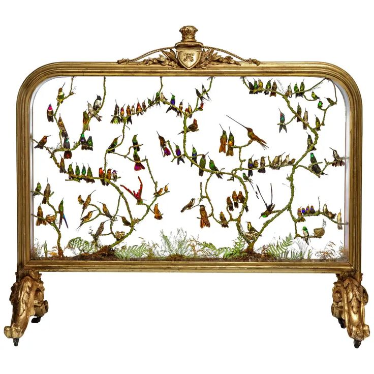 Rare Victorian Firescreen with Taxidermy Hummingbirds by