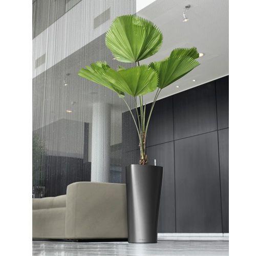 Explore 23 Modelos de vasos decorativos na decoração e inspire-se para realizar um bom trabalho nos ambientes de sua casa ou apartamento.