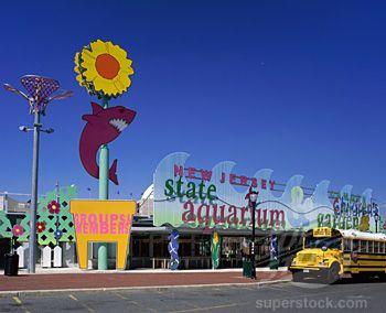 Aquarium Camden Camden New Jersey And New Jersey On Pinterest