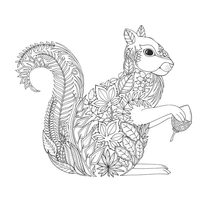 Pin For Later 20 Free Coloring Book Printables Enchanted Forest Squirrel This From The Highly Popular Doesnt Get Any Cuter