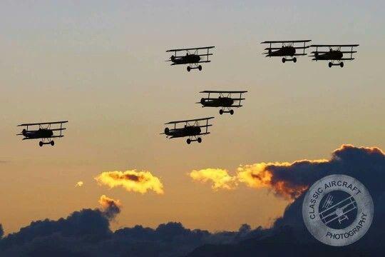 Fokker DR-1 Triplanes