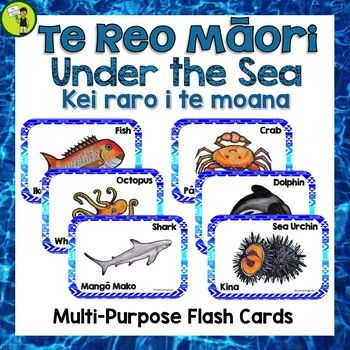 Teach the Te Reo Māori names for creatures under the sea - Kei raro i te moana - with these great multi-purpose flash cards. Maori Language Week Activities. Print and laminate the labels and create a Word Wall. You could also print and laminate the pictures and use these as a visual cue.
