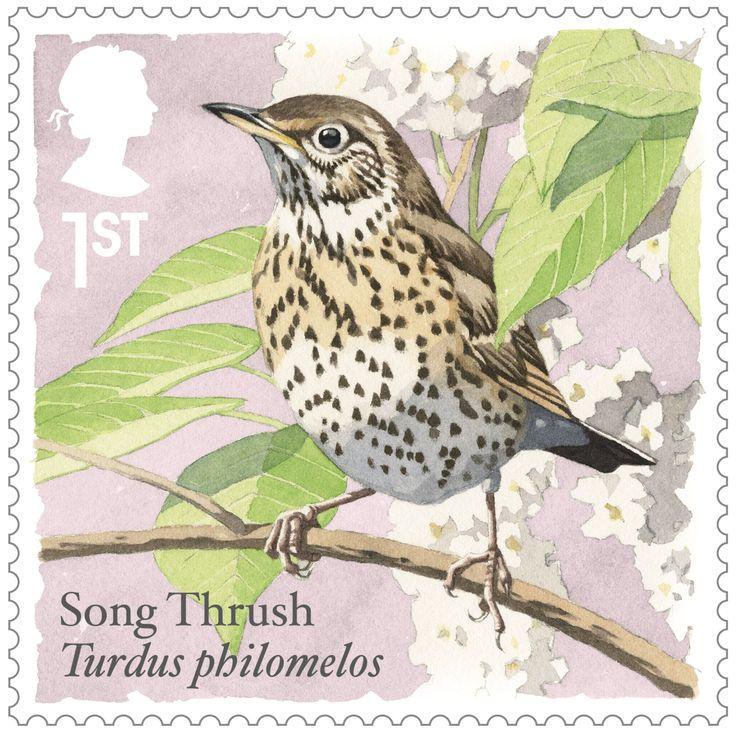Songbirds 1st Stamp (2017) Song Thrush