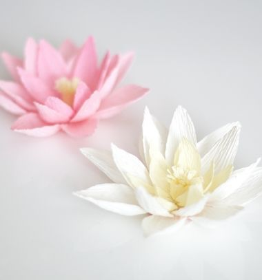 Crepe paper water lily / Vízililiomok krepp papírból / Mindy -  creative craft ideas for everyday