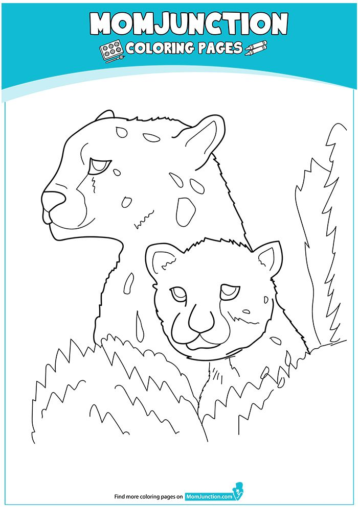 Cheetah With Baby 16 Coloring Pages Baby Cheetahs Color