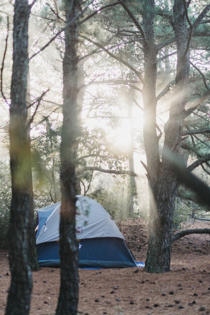 Camping at Delaware State Parks