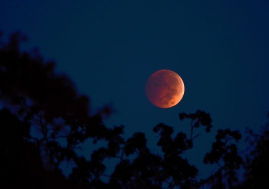 """The """"blood"""" moon rises over Murrells Inlet, S.C., in the early morning hours of Oct. 9. See more reader photos of the last lunar eclipse of 2014."""