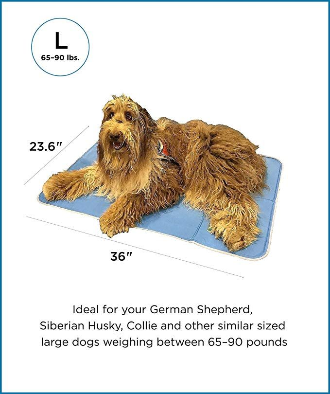 Amazon Com Thegreenpetshop Dog Cooling Mat Patented Pressure Activated Gel Cooling Pad For Dogs Pets Dog Acces Dog Cooling Mat Pet Cooling Mat Pet Shop