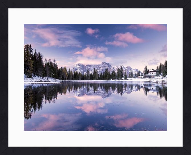 Quadro Alpine Pink (Michael Blanchette Photography) por On The Wall | Crie seu quadro com essa imagem https://www.onthewall.com.br/alpine-pink #quadro #moldura #canvas #poster #decoração