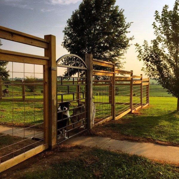 Top 60 Best Dog Fence Ideas - Canine Barrier Designs in ...