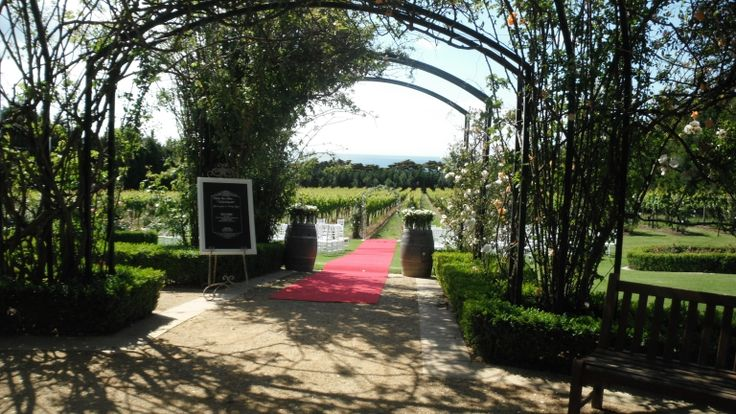 A ceremony by the vines and beyond the rose arbour- stunning!  Location:  Morning Star Estate on the Mornington Peninsula   http://www.robynsweddings.com.au/index.php/?cID=276