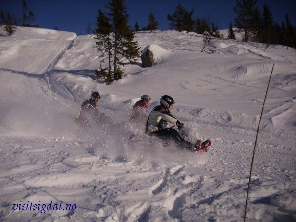 Fun in Eggedal, 2 hours from Oslo, Norway. Moro i Eggedalsfjellet, 2 timer fra Oslo! Visitsigdal.no