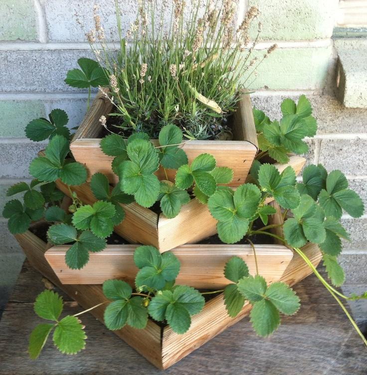 17 Best Images About Unique Planters On Pinterest