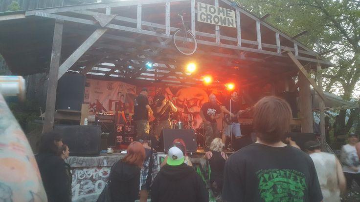 Punch Drunk, at spiderfest July 2017