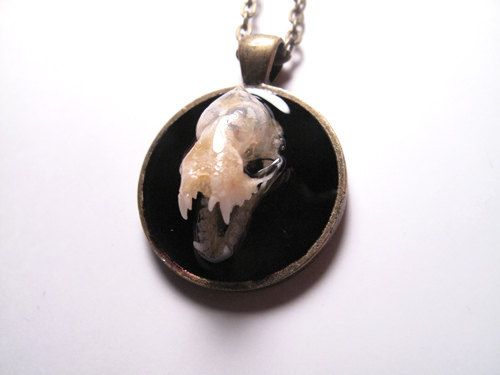 Bat Necklace - Real Bat Skull Necklace Taxidermy Jewelry OOAK Skull Bone Jewelry on Etsy, $39.99