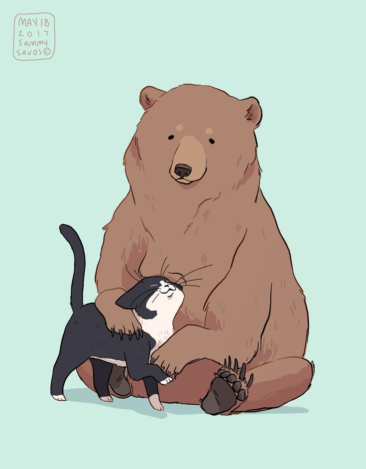 Картинки у кого сегодня пдр картинка с медведем