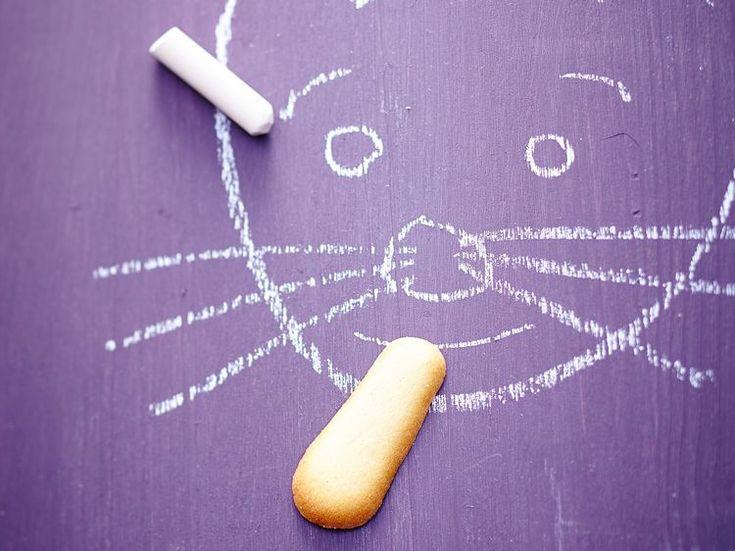 Biscuits langues de chat