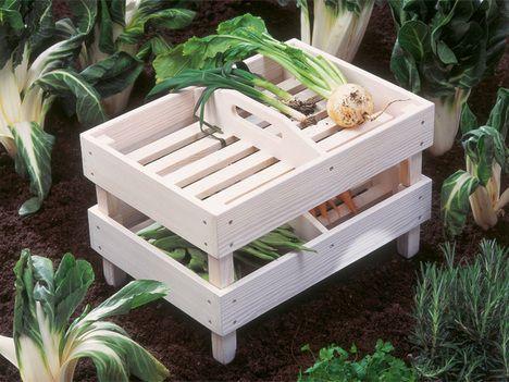 Doppelt gut: In den flachen Kästen mit Griff können Sie Kräuter, Obst und Gemüse aus dem Garten holen und anschließend luftig lagern.