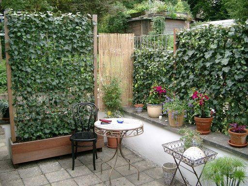 Elegant Efeu im Holztrog und eingepflanzt als Terrassensichtschutz Mobilane Fertighecke Pflanzfertige Heckenelemente Fertiger