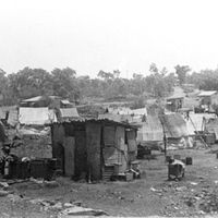 Frog Hollow, Darwin NT (1938 -1942) was effectively a shanty town, the site of labourer camps. Source: http://www.ntlexhibit.nt.gov.au/collections/show/1