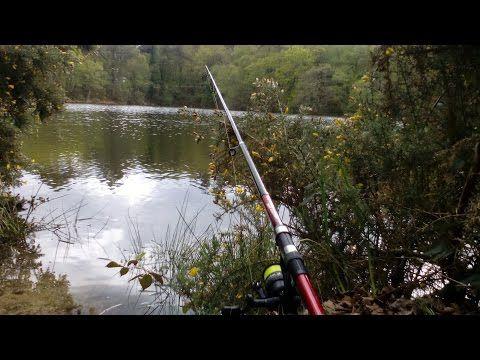 Peche de la truite au bouchon en étang  #bouchon #etang #peche