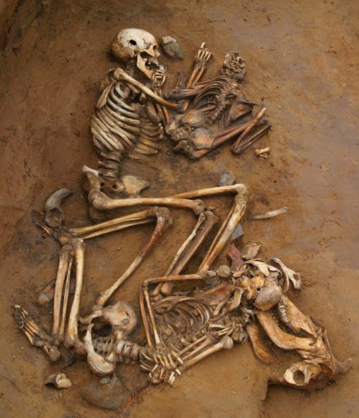 Ancient Skeletons Reveal Genetic History of Central Europe. Using hundreds of ancient skeletons, an international team of researchers has pieced together the complete genetic history of central Europe.