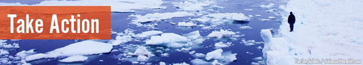 We Can End Arctic Drilling Plans--For Good  Now is the time to say no to risky oil drilling in America's Arctic Ocean.