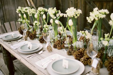 LaraBelle's media - table setting - white cloth, napkins, plates, place tags, clear wine glasses, pine cones and paperwhites down center - must start early!