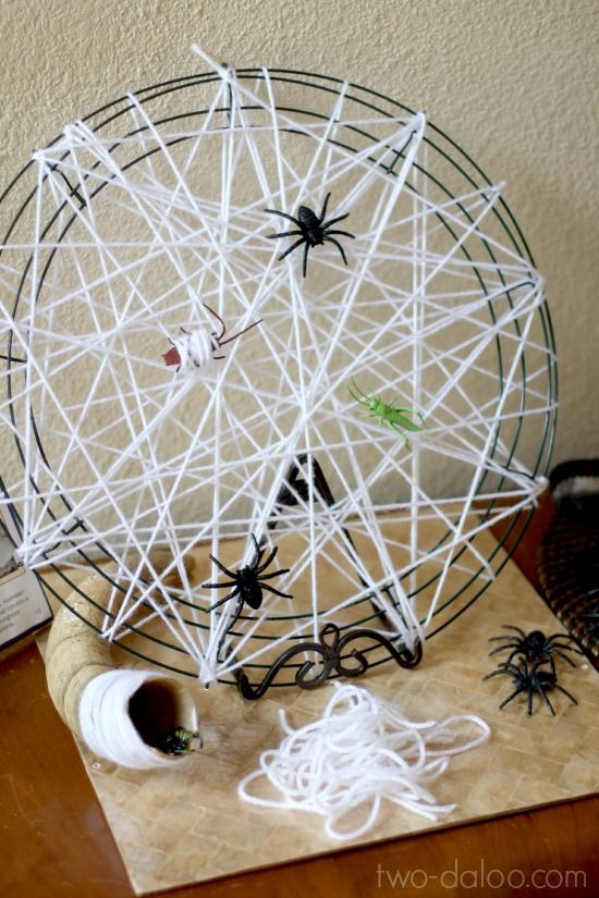 A playful invitation to learn about the habitats and feeding habits of spiders.