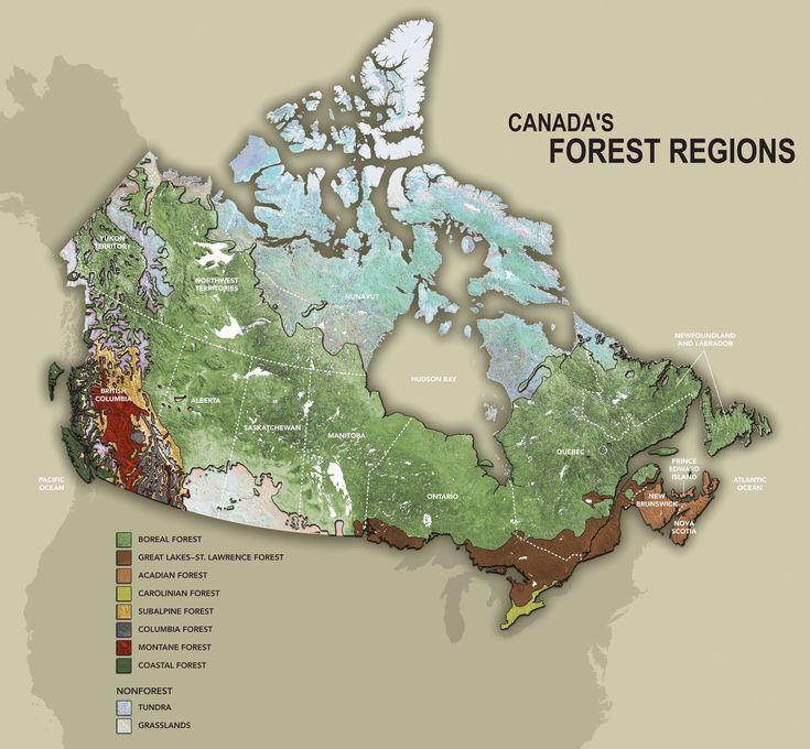 Regions Of Canada Map%0A Canada u    s Forest Regions