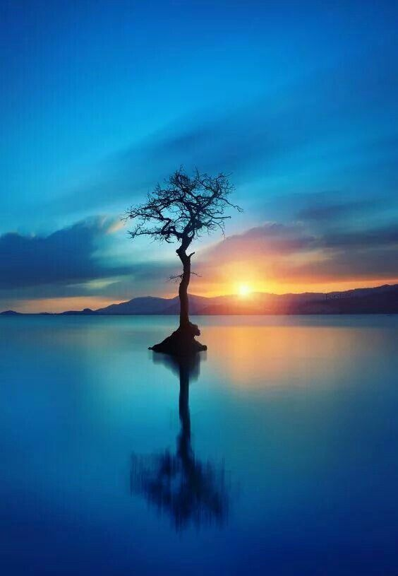 I'm waiting for the pain to set like the sun. Nate Pritts