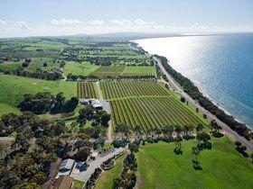 Port Lincoln, South Australia - fishing, tuna, wines, shark diving