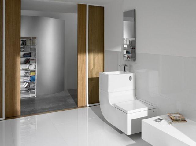 Oltre 1000 idee su cuvette wc su pinterest cuvette wc suspendu wc suspendu e d coration toilettes for Comcuvette wc gain de place