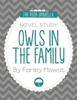 how to begin a novel study