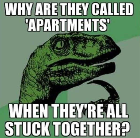 17 Best Apartment Humor Images On Pinterest Ha Ha Funny