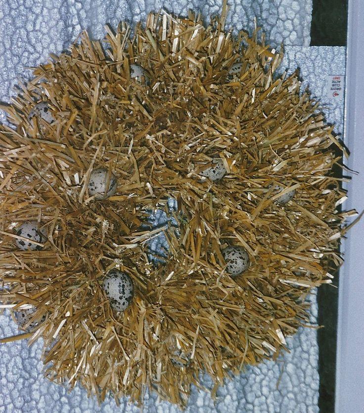 krans van stro, stro dubbelgevouwen aan een kram er in steken, versieren met kunststof eieren. Heb er later een kip in gezet