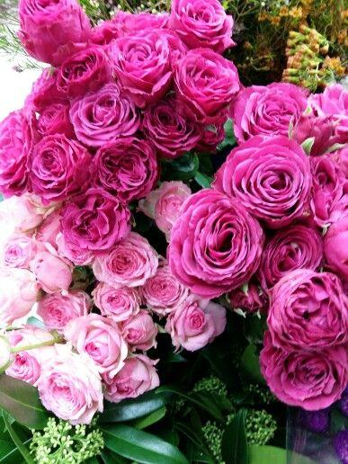 #flowers #양재동꽃시장
